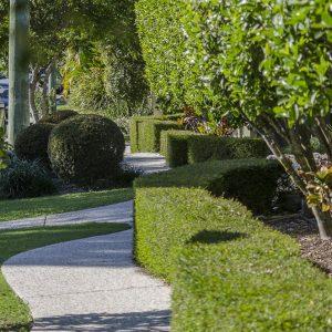 garden-maintenance-sm2